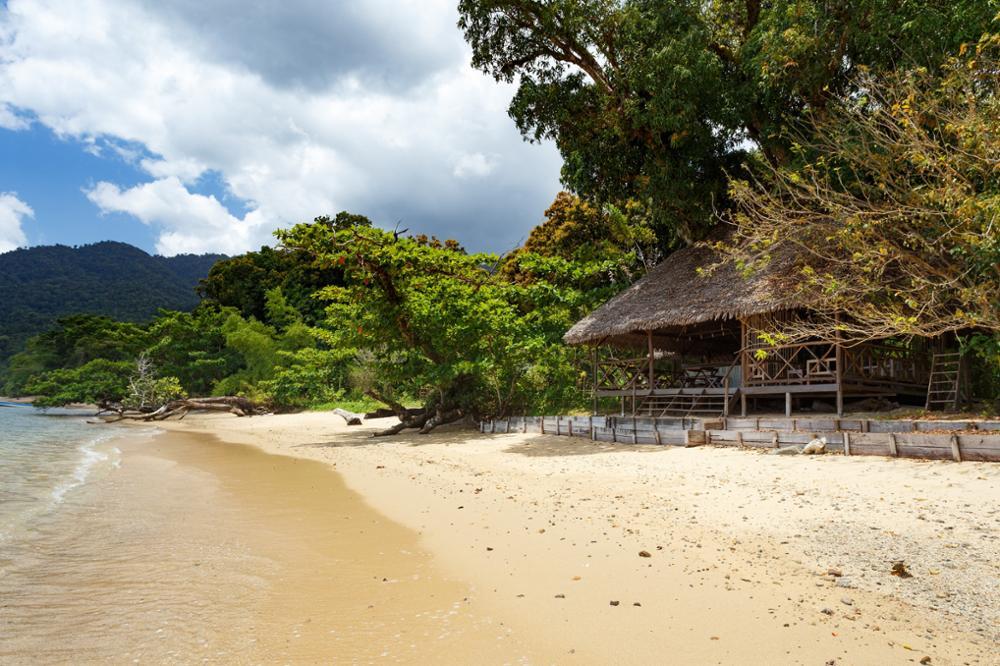 Le parc national de Masoala : un véritable sanctuaire de la nature