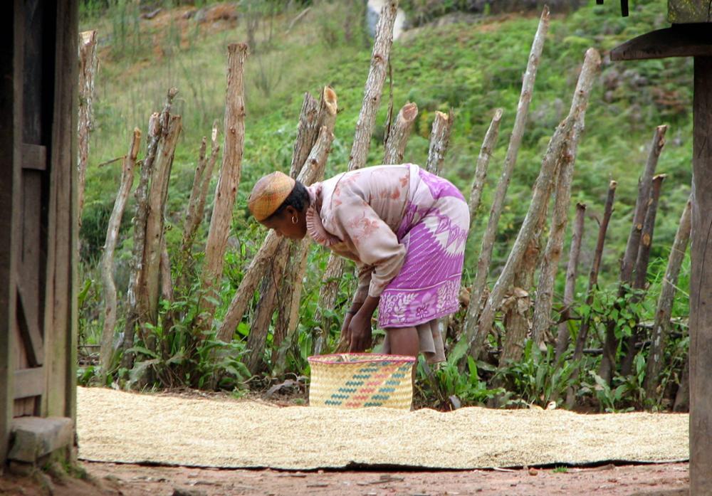 La femme malagasy dans toute sa complexité